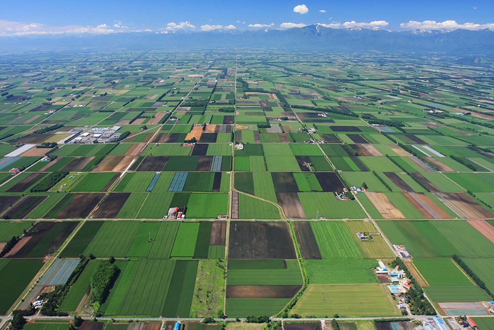 食と農の景勝地・十勝協議会事務局画像