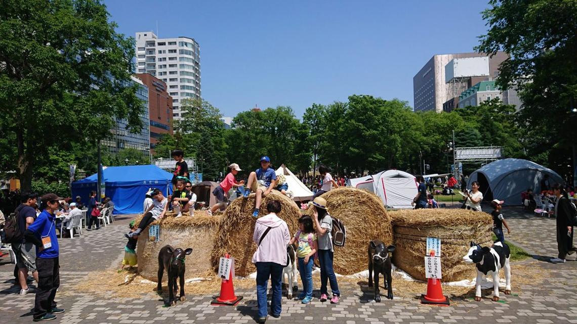 第28回YOSAKOIソーラン祭り「北海道万祭」企画・運営画像