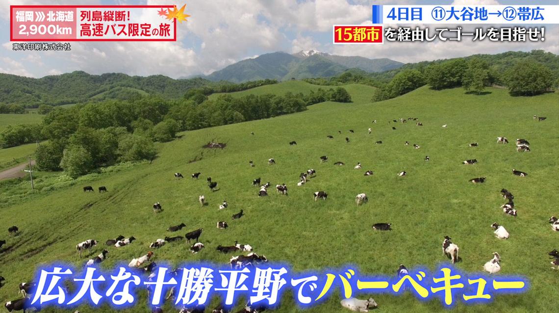 テレビ東京「高速バス限定の旅」様画像